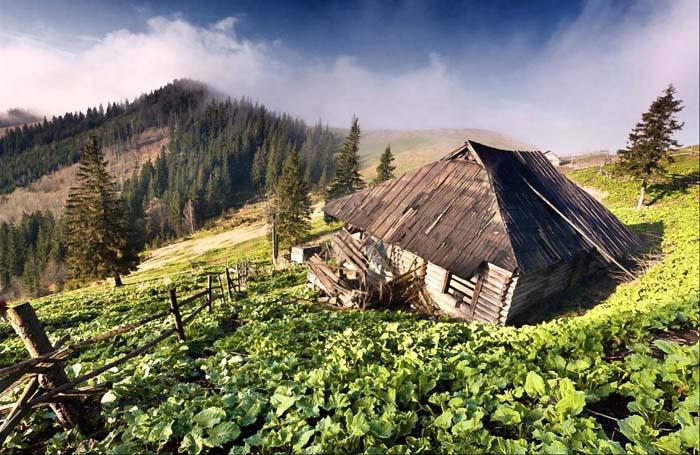 Поход на Довбушанку (горганы)