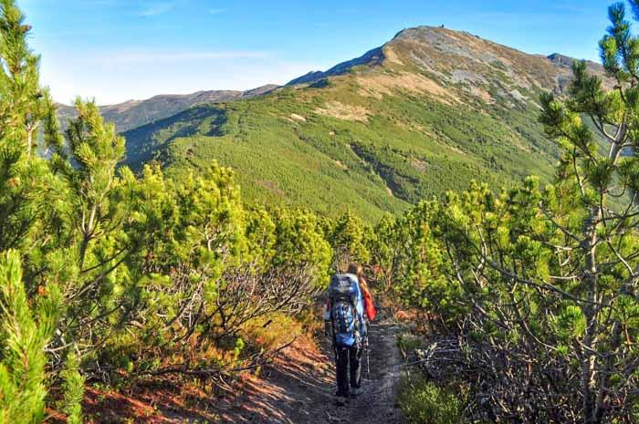 Восхождение на гору Поп Иван Черногорский @ Ворохта