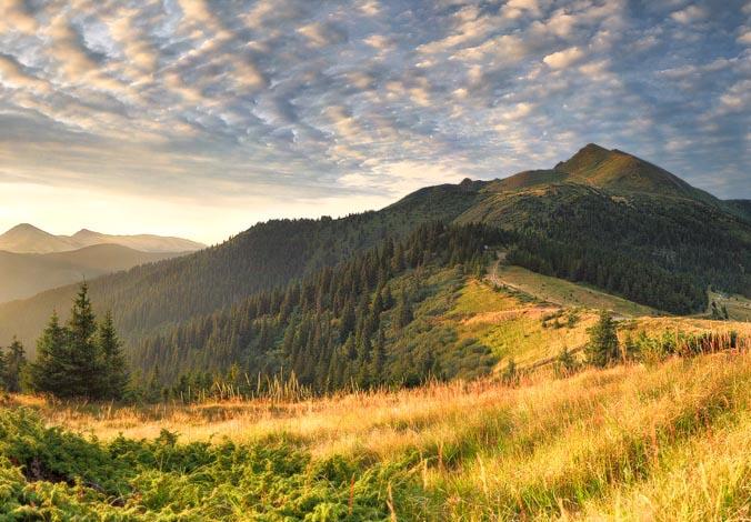 Черногора (весь массив)