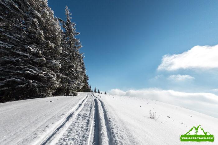 Поход в горы Довга и Плоска на Буковель