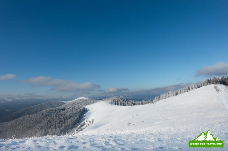 Поход в горы на Буковеле в горы Довга и Плоска