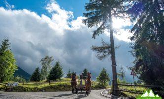 Поход в горы Румунии, Рогдна — Кайлор — Веселое кладбище-05856