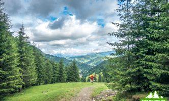 Поход в горы Румунии, Рогдна — Кайлор — Веселое кладбище-05906