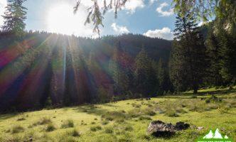 Поход в горы Румунии, Рогдна — Кайлор — Веселое кладбище-06048